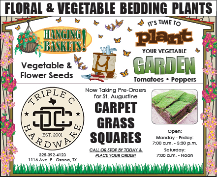 Floral & Vegetable bedding plants Sidebar bottom