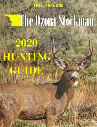 2020 Hunting Guide